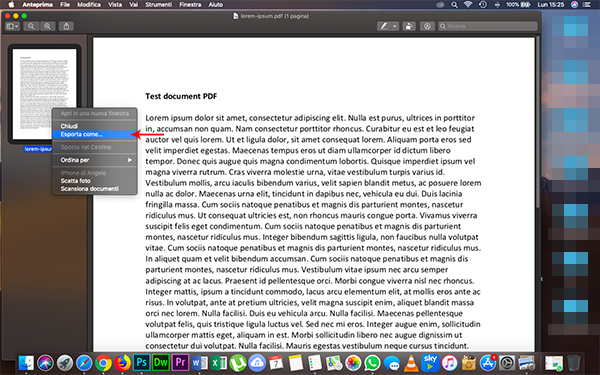 convertire PDF in JPG con anteprima (2)