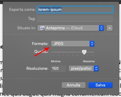 convertire PDF in JPG con anteprima (3)