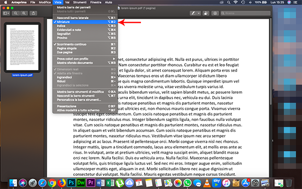 convertire PDF in JPG con anteprima