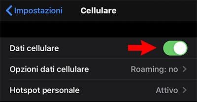 conessione dati iphone app store