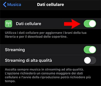 dati cellulare apple music