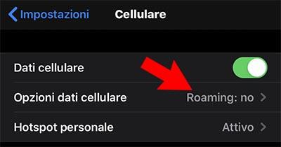 iphone roaming