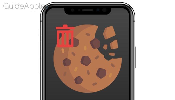 Come eliminare cookie da iPhone